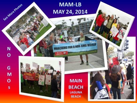 MAM-LB 5.24.14 Collage
