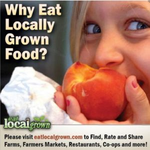 Why eat local grown food