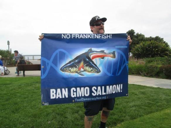 Ban GMO Salmon Banner MAM-LB 5.24.14